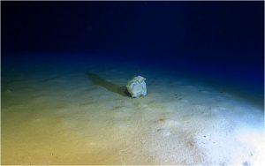 Trash at the bottom of the Calypso Deep