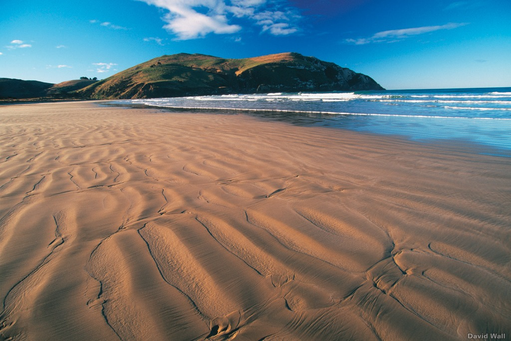 Beach at Cannibal Bay, New Zealand